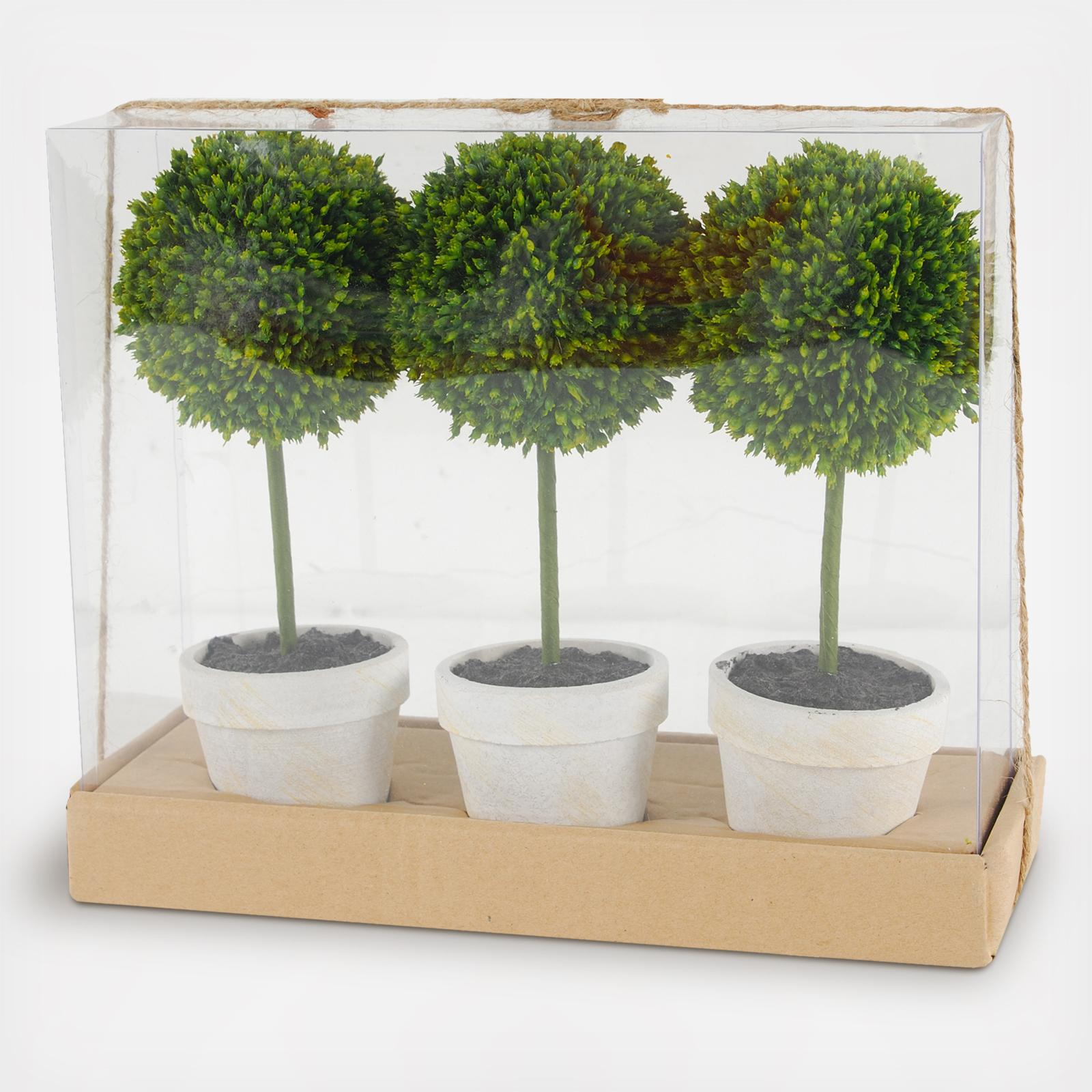 A B Home Potted Boxwood Topiaries Gift Box Set Of 3 Zola